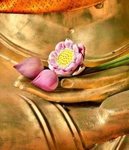 Золото Будды для тела